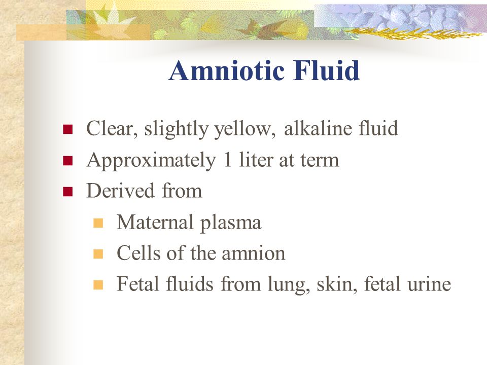 Amniotic Fluid Clear, slightly yellow, alkaline fluid Approximately 1 liter at term Derived from Maternal plasma Cells of the amnion Fetal fluids from lung, skin, fetal urine