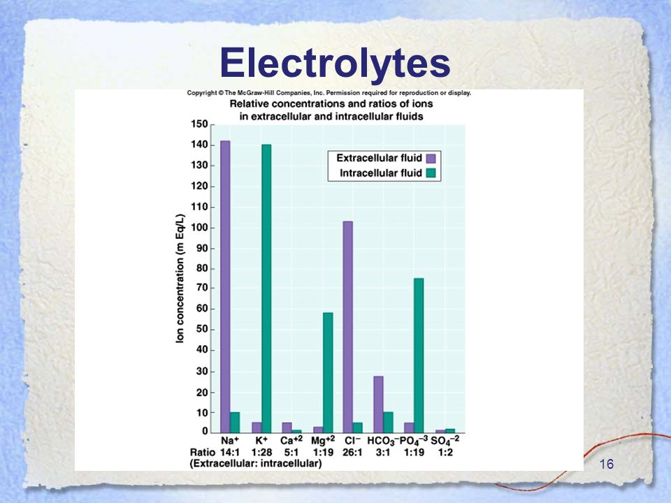 16 Electrolytes