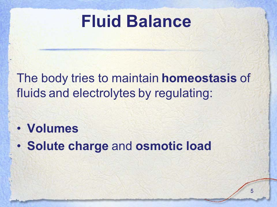 5 The body tries to maintain homeostasis of fluids and electrolytes by regulating: Volumes Solute charge and osmotic load
