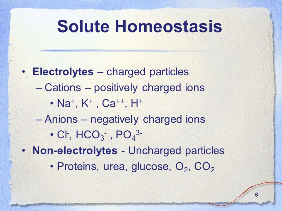 6 Solute Homeostasis Electrolytes – charged particles –Cations – positively charged ions Na +, K +, Ca ++, H + –Anions – negatively charged ions Cl -, HCO 3 -, PO 4 3- Non-electrolytes - Uncharged particles Proteins, urea, glucose, O 2, CO 2