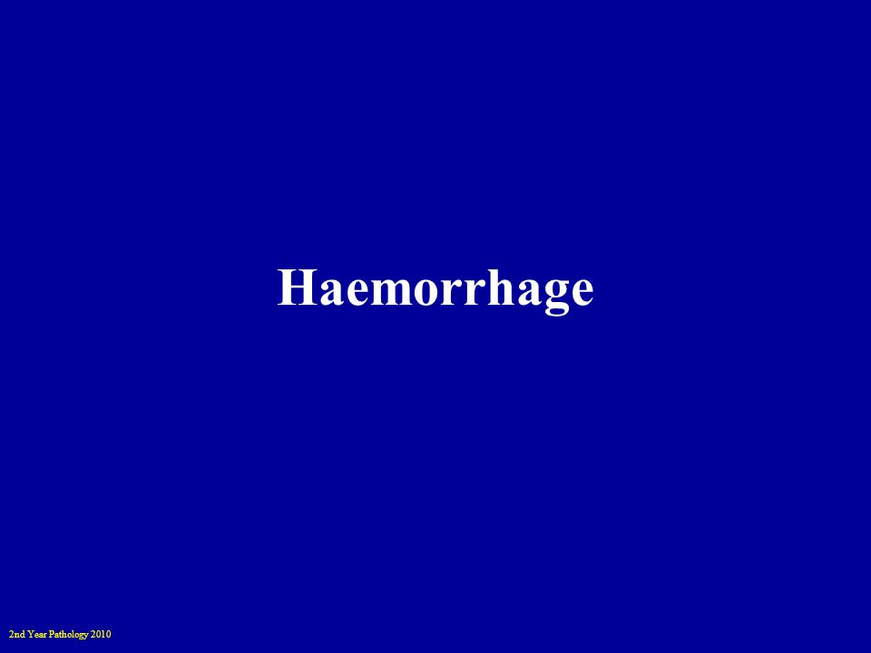 2nd Year Pathology 2010 Haemorrhage