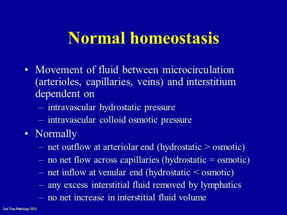 2nd Year Pathology 2010 Normal homeostasis ARTERIOLEVENULECAPILLARY BED Net flow inNo net flowNet flow out LYMPHATICS Excess fluid hydrostatic P oncotic P