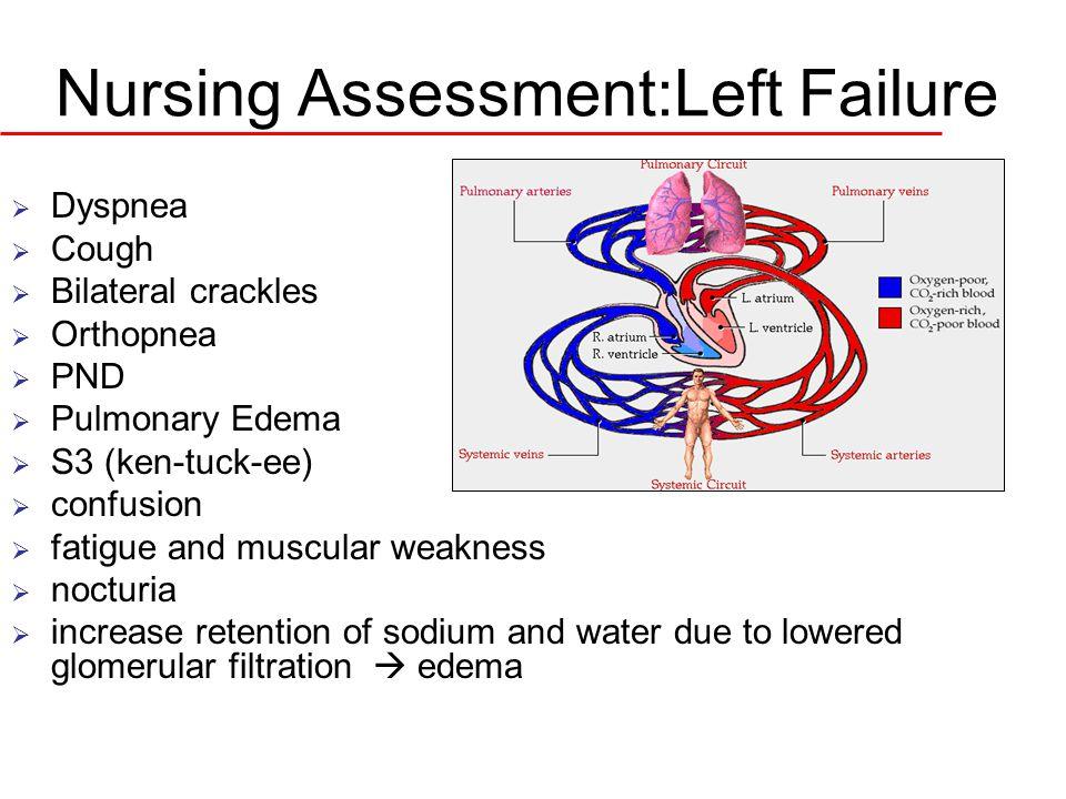 Nursing Assessment:Left Failure  Dyspnea  Cough  Bilateral crackles  Orthopnea  PND  Pulmonary Edema  S3 (ken-tuck-ee)  confusion  fatigue an