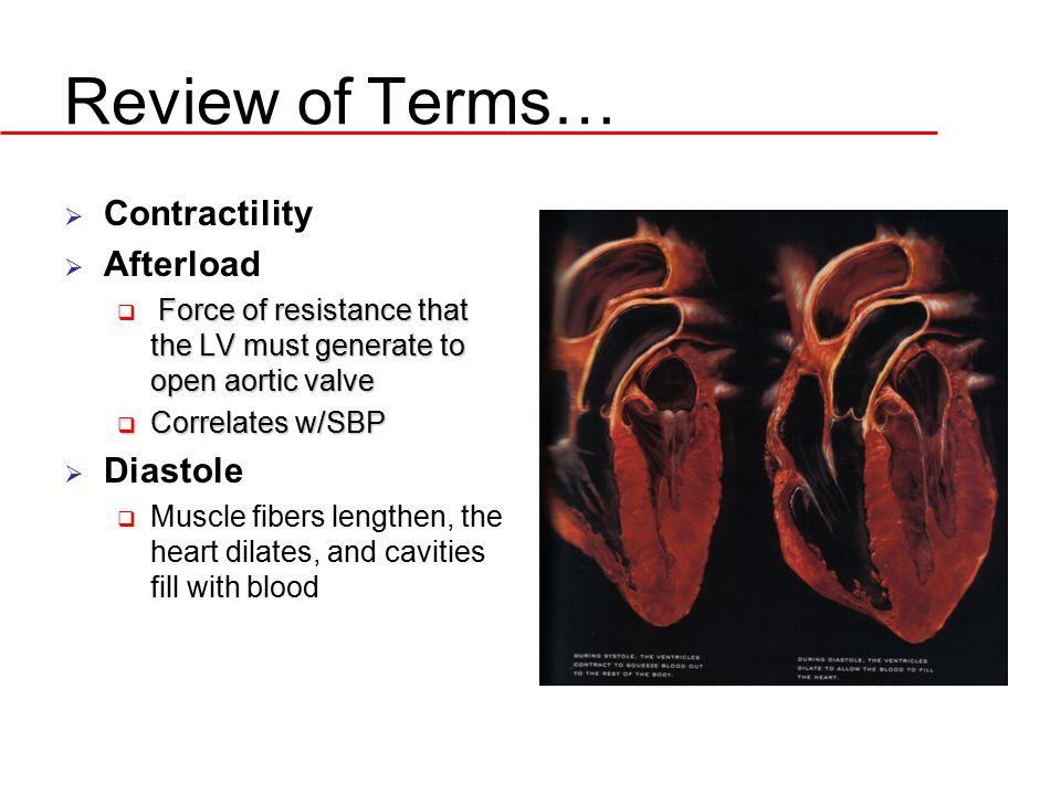 Review of Terms…  Contractility  Afterload Force of resistance that the LV must generate to open aortic valve  Force of resistance that the LV must
