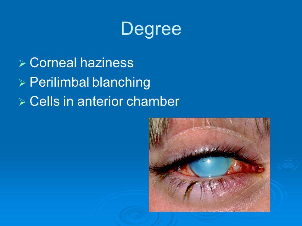 Degree   Corneal haziness   Perilimbal blanching   Cells in anterior chamber