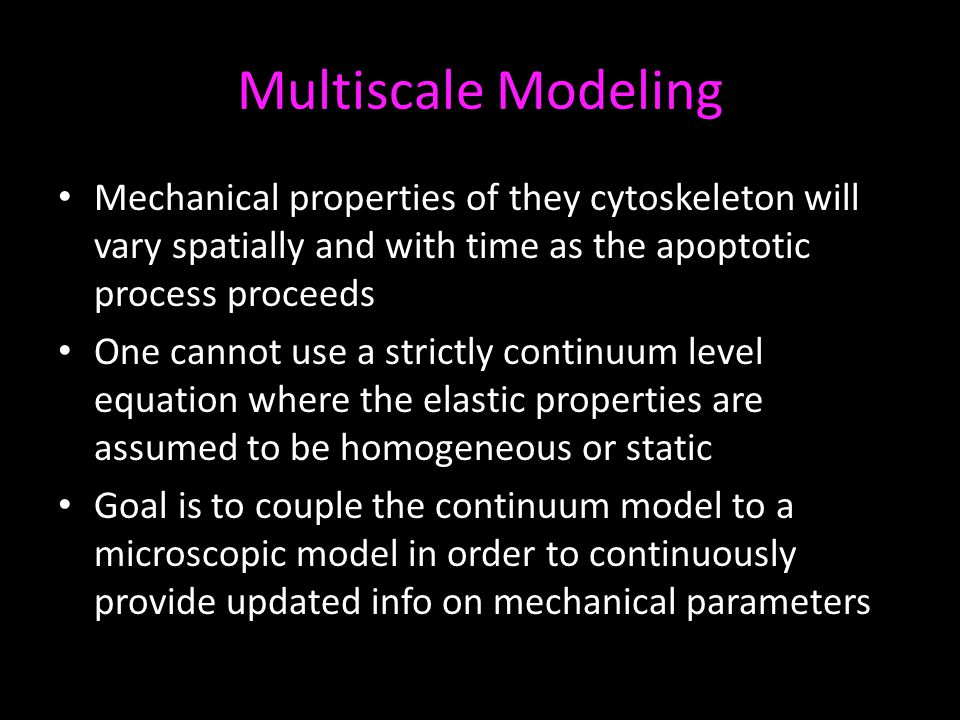 Multiscale Modeling Mechanical properties of they cytoskeleton will vary spatially and with time as the apoptotic process proceeds One cannot use a st