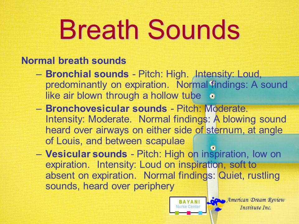 Breath Sounds The diaphragm of the stethoscope is used for assessing breath sounds. The right middle lobe is assessed by listening on the patient's ri