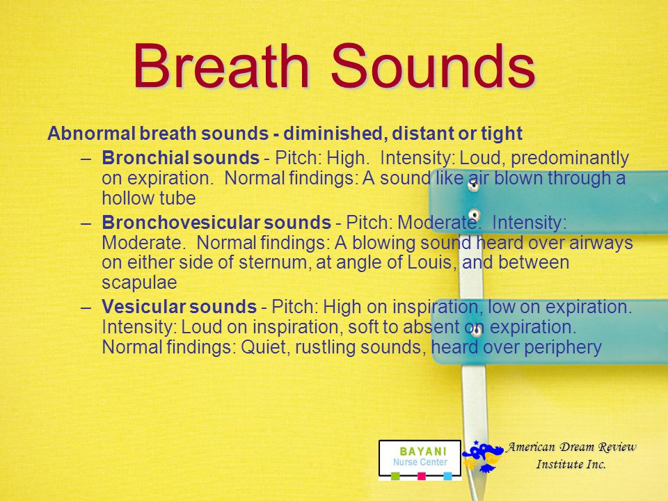 Breath Sounds Normal breath sounds –Bronchial sounds - Pitch: High. Intensity: Loud, predominantly on expiration. Normal findings: A sound like air bl