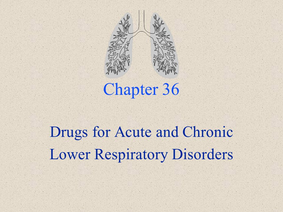 Chapter 36 Drugs for Acute and Chronic Lower Respiratory Disorders
