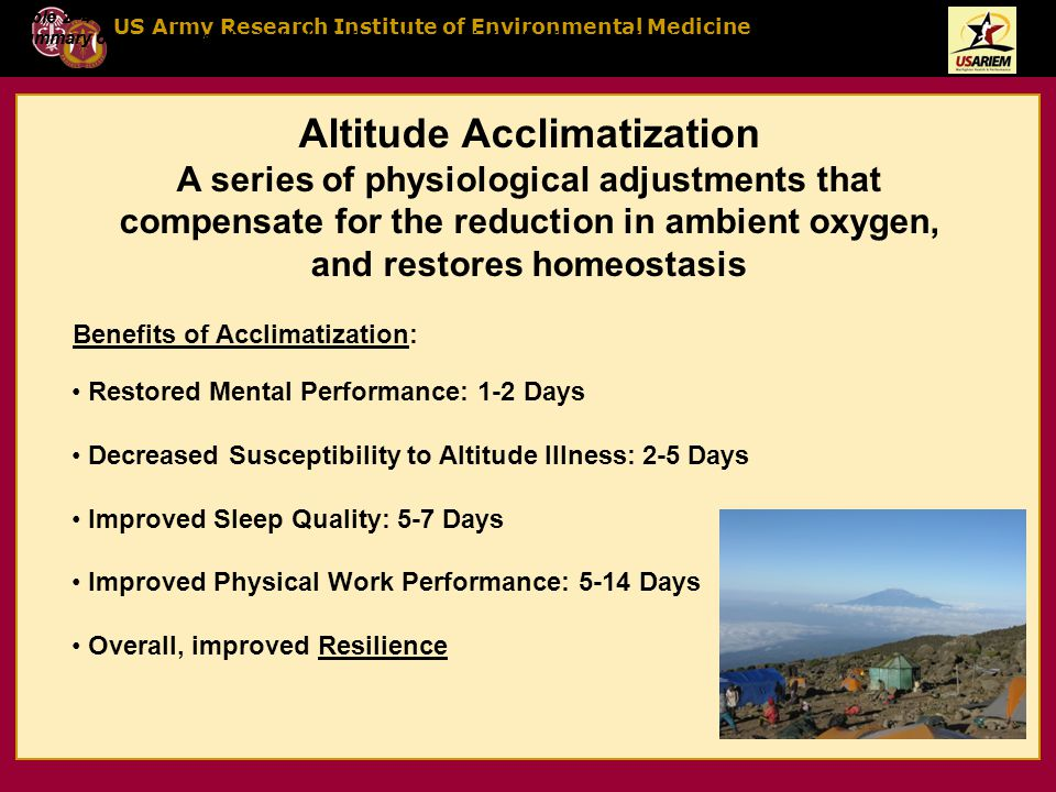 US Army Research Institute of Environmental Medicine Altitude Acclimatization A series of physiological adjustments that compensate for the reduction