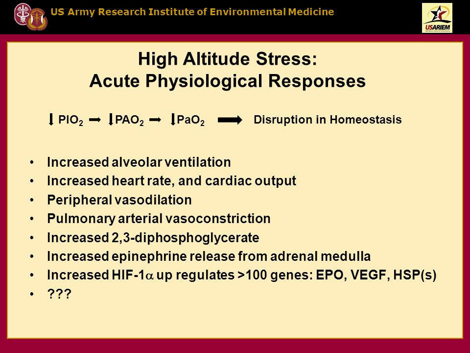 US Army Research Institute of Environmental Medicine High Altitude Stress: Acute Physiological Responses Increased alveolar ventilation Increased heart rate, and cardiac output Peripheral vasodilation Pulmonary arterial vasoconstriction Increased 2,3-diphosphoglycerate Increased epinephrine release from adrenal medulla Increased HIF-1  up regulates >100 genes: EPO, VEGF, HSP(s) .