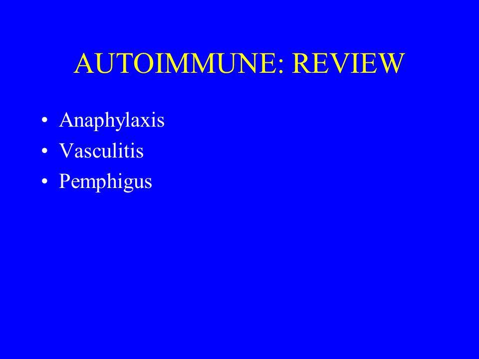 AUTOIMMUNE: REVIEW Anaphylaxis Vasculitis Pemphigus