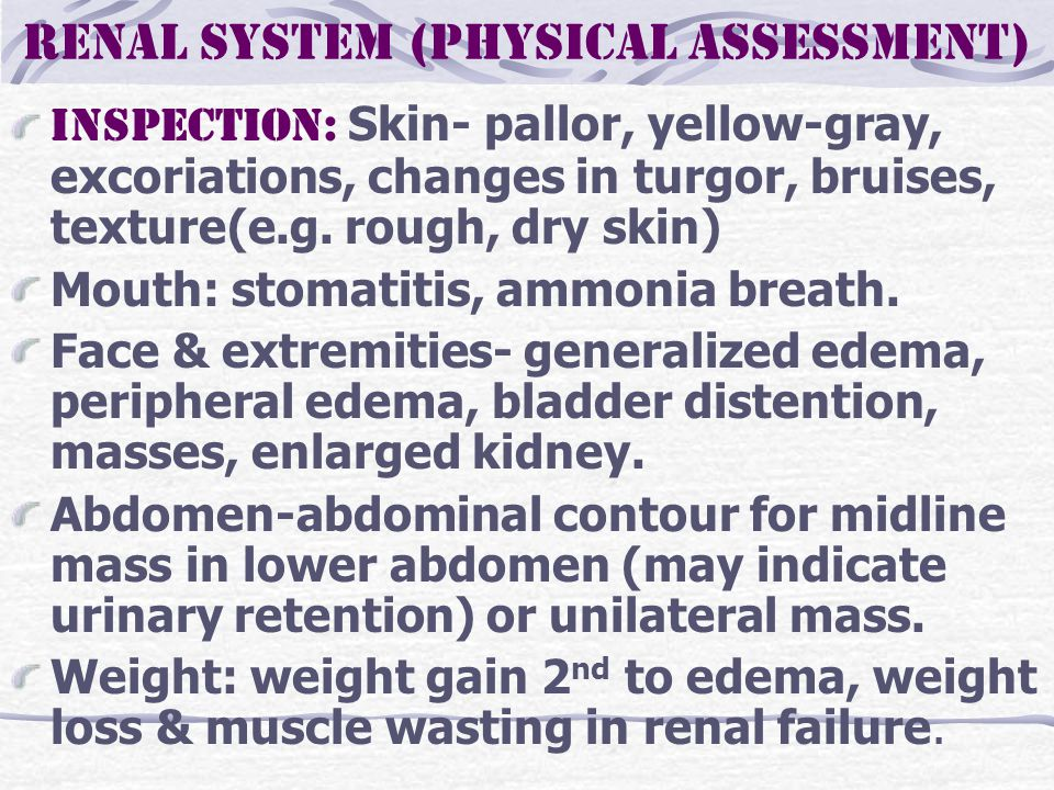 Renal system (physical assessment) Inspection: Skin- pallor, yellow-gray, excoriations, changes in turgor, bruises, texture(e.g.