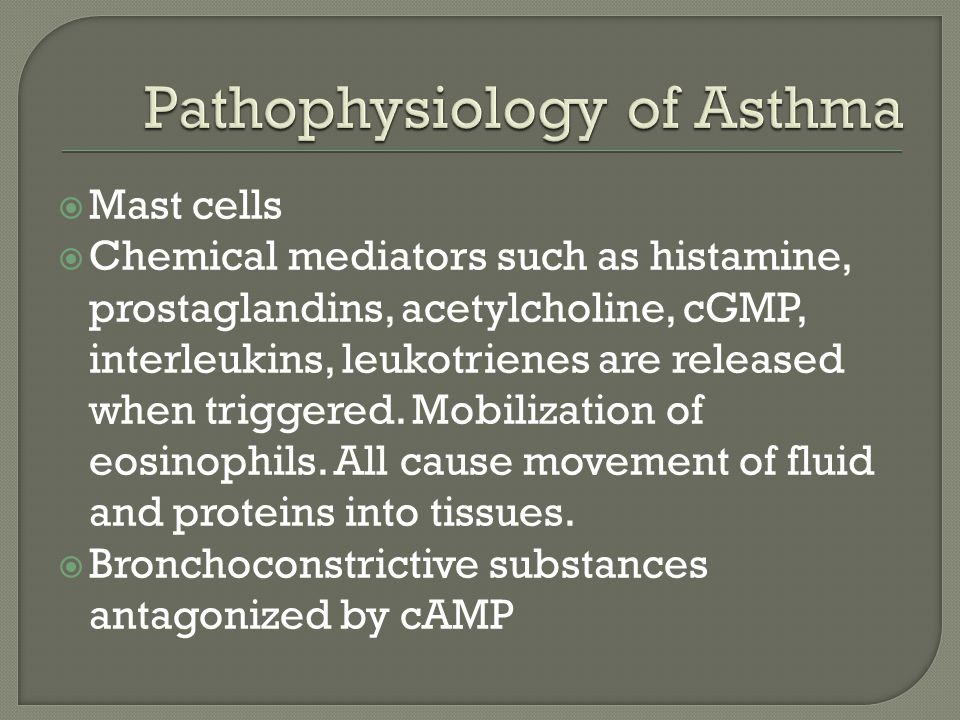  Mast cells  Chemical mediators such as histamine, prostaglandins, acetylcholine, cGMP, interleukins, leukotrienes are released when triggered.