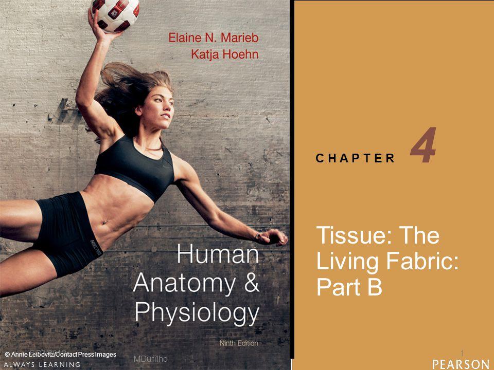 C H A P T E R © Annie Leibovitz/Contact Press Images Tissue: The Living Fabric: Part B 4 MDufilho 6/23/20121