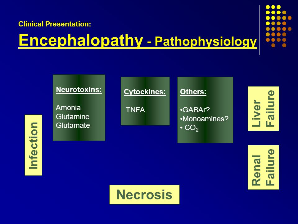 Clinical Presentation: Encephalopathy - Pathophysiology Necrosis Renal Failure Liver Failure Infection Others: GABAr.
