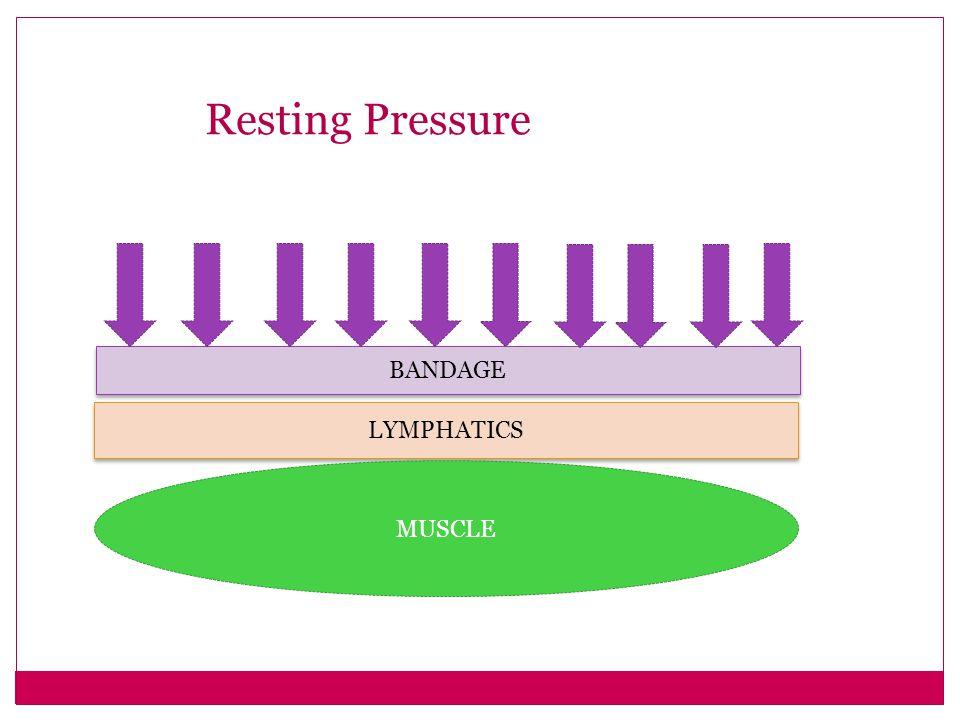Resting Pressure BANDAGE LYMPHATICS MUSCLE