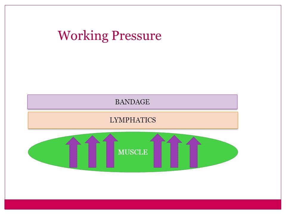 Working Pressure BANDAGE LYMPHATICS MUSCLE