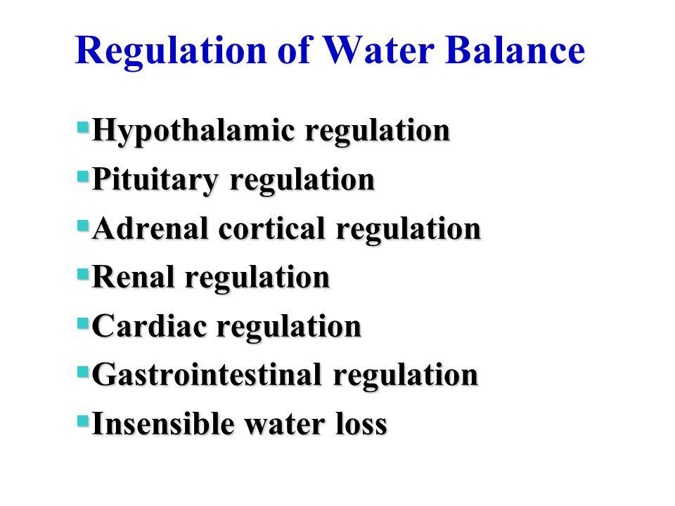 Regulation of Water Balance  Hypothalamic regulation  Pituitary regulation  Adrenal cortical regulation  Renal regulation  Cardiac regulation  Gastrointestinal regulation  Insensible water loss