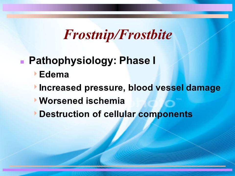 Frostnip/Frostbite n Pathophysiology: Phase I  Edema  Increased pressure, blood vessel damage  Worsened ischemia  Destruction of cellular componen