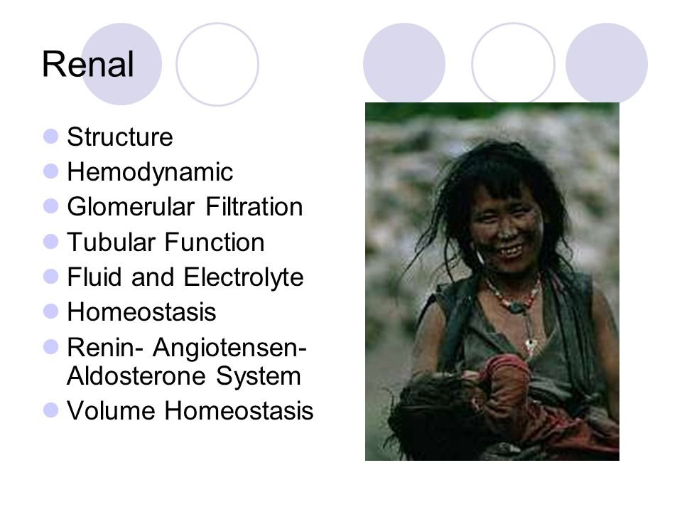 Renal Structure Hemodynamic Glomerular Filtration Tubular Function Fluid and Electrolyte Homeostasis Renin- Angiotensen- Aldosterone System Volume Homeostasis