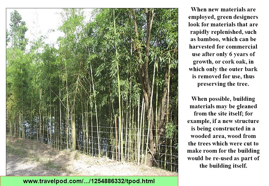 When new materials are employed, green designers look for materials that are rapidly replenished, such as bamboo, which can be harvested for commercia