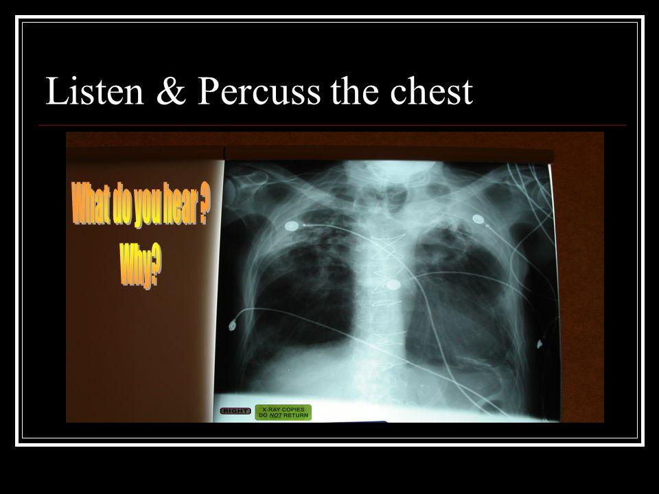 Listen & Percuss the chest