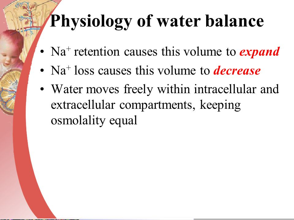 Physiology of water balance Na + retention causes this volume to expand Na + loss causes this volume to decrease Water moves freely within intracellul