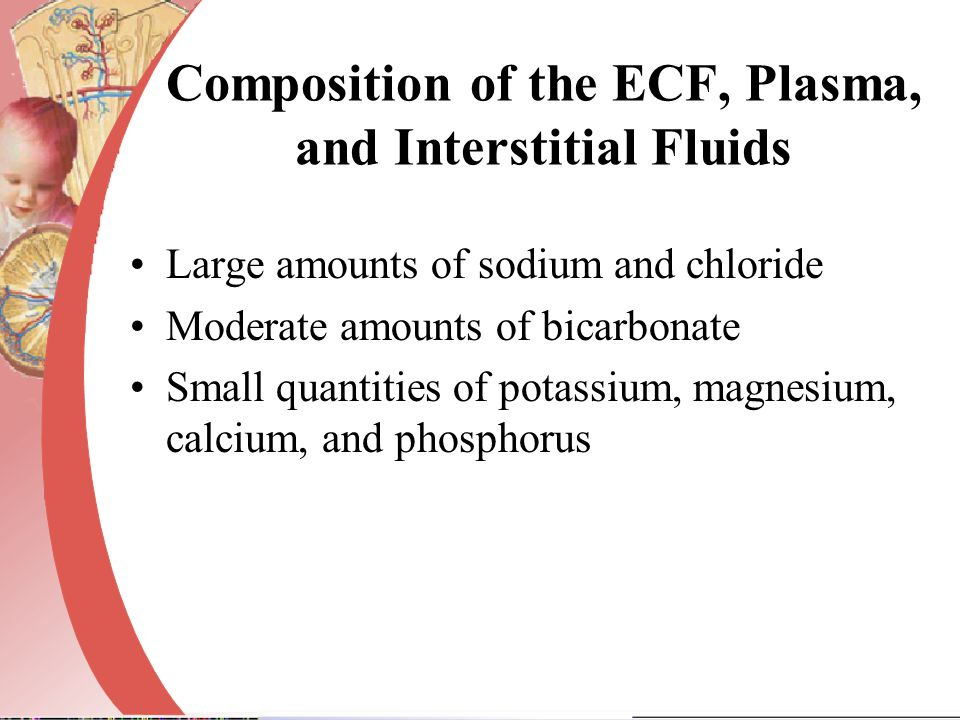 Composition of the ECF, Plasma, and Interstitial Fluids Large amounts of sodium and chloride Moderate amounts of bicarbonate Small quantities of potas