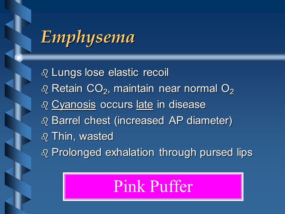 Emphysema b Lungs lose elastic recoil b Retain CO 2, maintain near normal O 2 b Cyanosis occurs late in disease b Barrel chest (increased AP diameter)