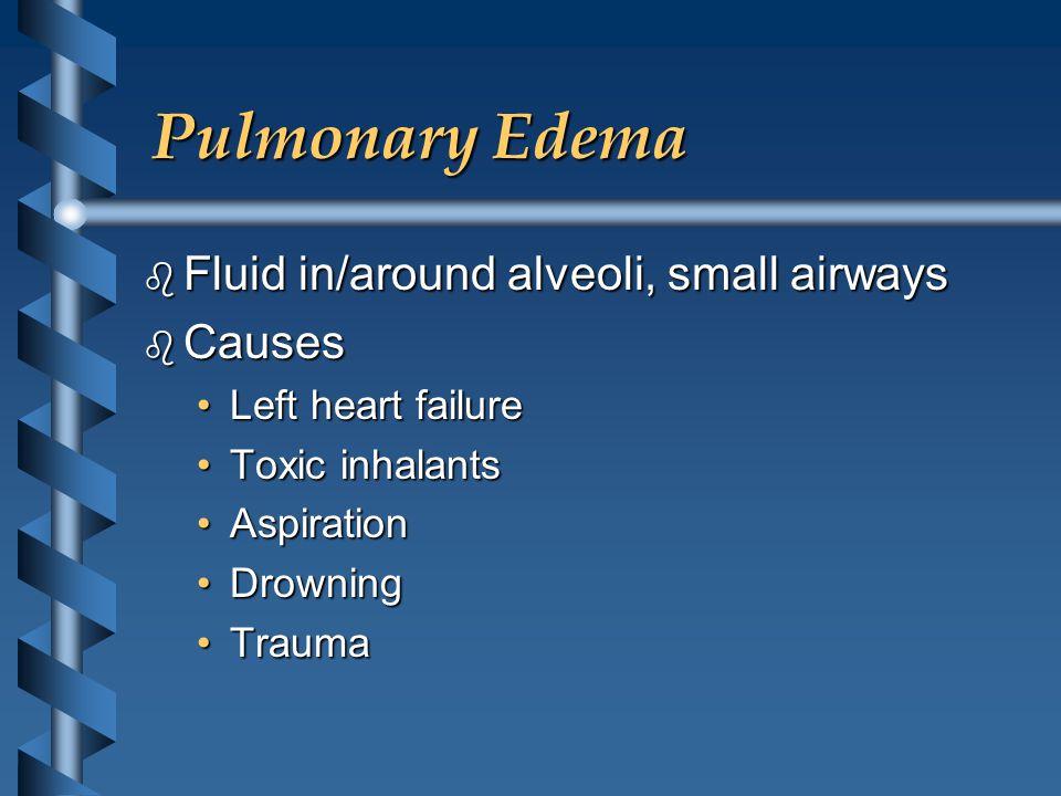 Pulmonary Edema b Fluid in/around alveoli, small airways b Causes Left heart failureLeft heart failure Toxic inhalantsToxic inhalants AspirationAspira