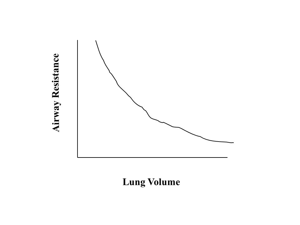 Lung Volume Airway Resistance