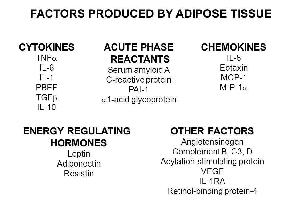FACTORS PRODUCED BY ADIPOSE TISSUE CYTOKINES TNF  IL-6 IL-1 PBEF TGF  IL-10 CHEMOKINES IL-8 Eotaxin MCP-1 MIP-1  ENERGY REGULATING HORMONES Leptin