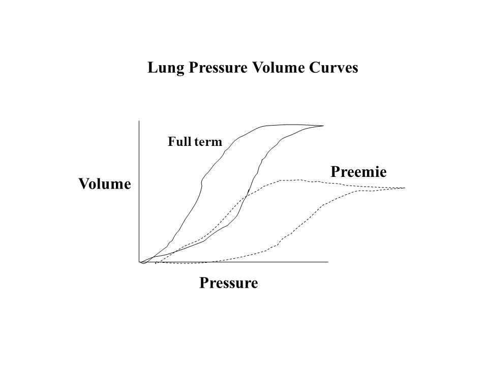 Pressure Volume Full term Preemie Lung Pressure Volume Curves