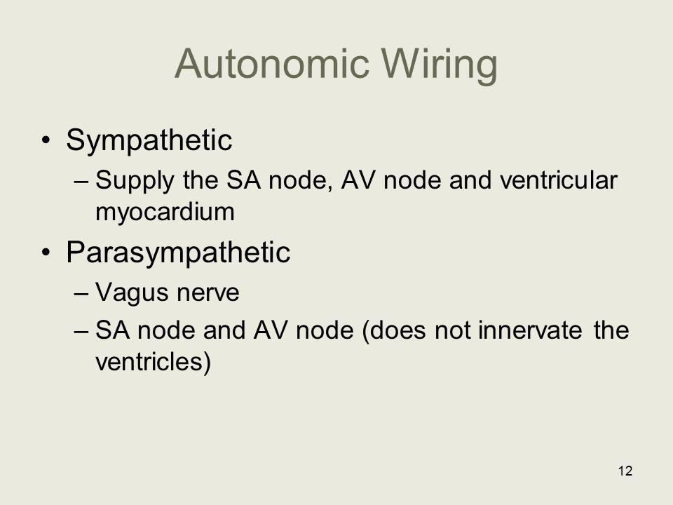 Autonomic Wiring Sympathetic –Supply the SA node, AV node and ventricular myocardium Parasympathetic –Vagus nerve –SA node and AV node (does not inner