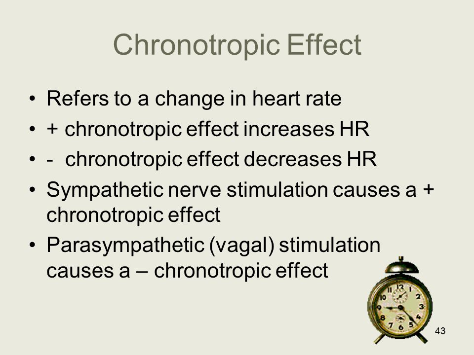 Chronotropic Effect Refers to a change in heart rate + chronotropic effect increases HR - chronotropic effect decreases HR Sympathetic nerve stimulati