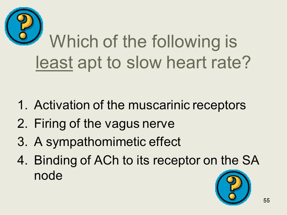 Which of the following is least apt to slow heart rate? 1.Activation of the muscarinic receptors 2.Firing of the vagus nerve 3.A sympathomimetic effec
