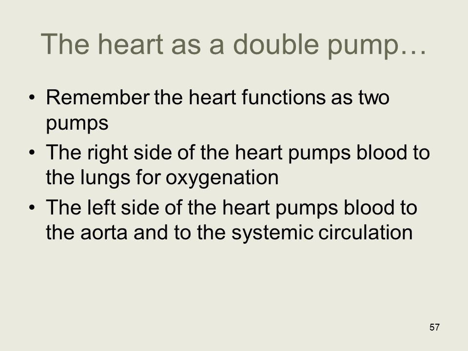 The heart as a double pump… Remember the heart functions as two pumps The right side of the heart pumps blood to the lungs for oxygenation The left si