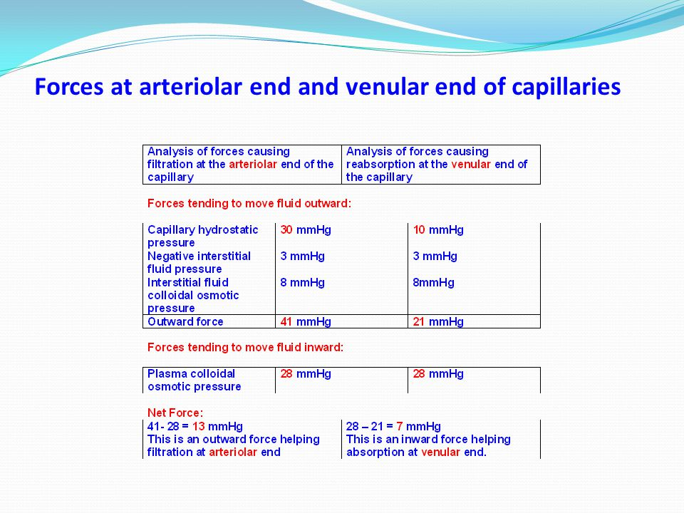 Forces at arteriolar end and venular end of capillaries