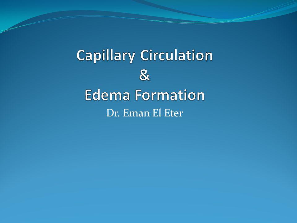Dr. Eman El Eter