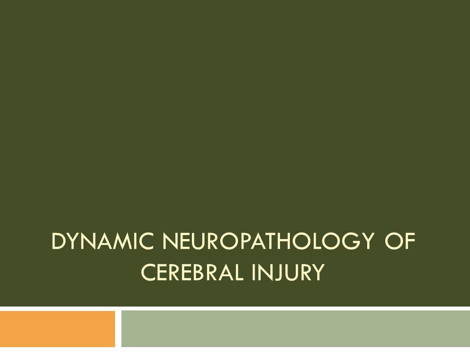 DYNAMIC NEUROPATHOLOGY OF CEREBRAL INJURY