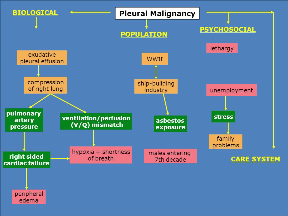 Pleural Malignancy WWII ship-building industry asbestos exposure males entering 7th decade lethargy unemployment hypoxia + shortness of breath ventilation/perfusion (V/Q) mismatch compression of right lung exudative pleural effusion peripheral edema pulmonary artery pressure family problems stress PSYCHOSOCIAL POPULATION BIOLOGICAL CARE SYSTEM right sided cardiac failure