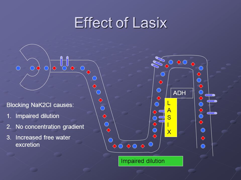 Effect of Lasix ADH Blocking NaK2Cl causes: 1.Impaired dilution 2.No concentration gradient 3.Increased free water excretion LASIXLASIX Impaired dilut