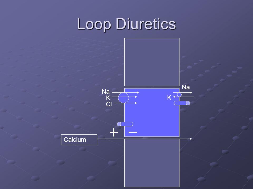 Loop Diuretics Na K Cl Na K Calcium