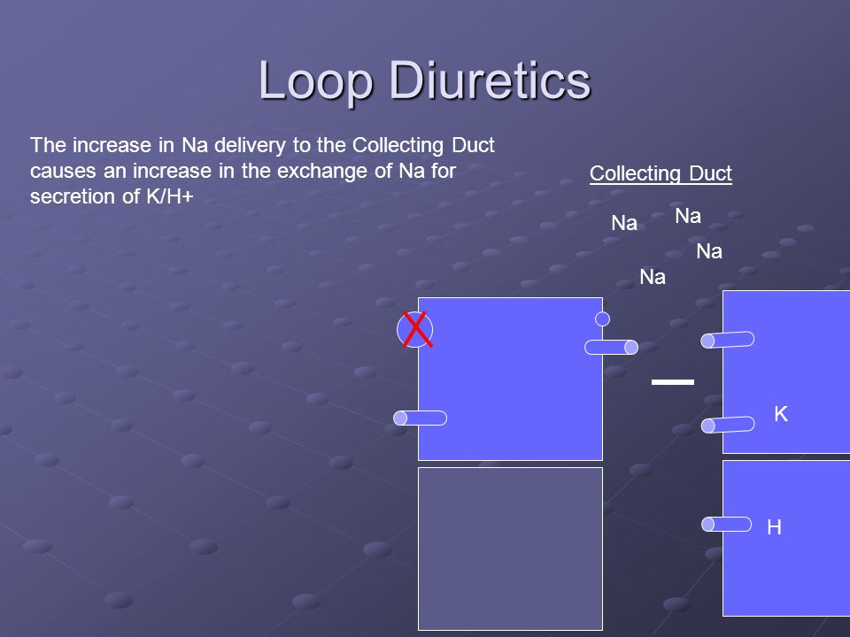 Loop Diuretics Collecting Duct Na K The increase in Na delivery to the Collecting Duct causes an increase in the exchange of Na for secretion of K/H+