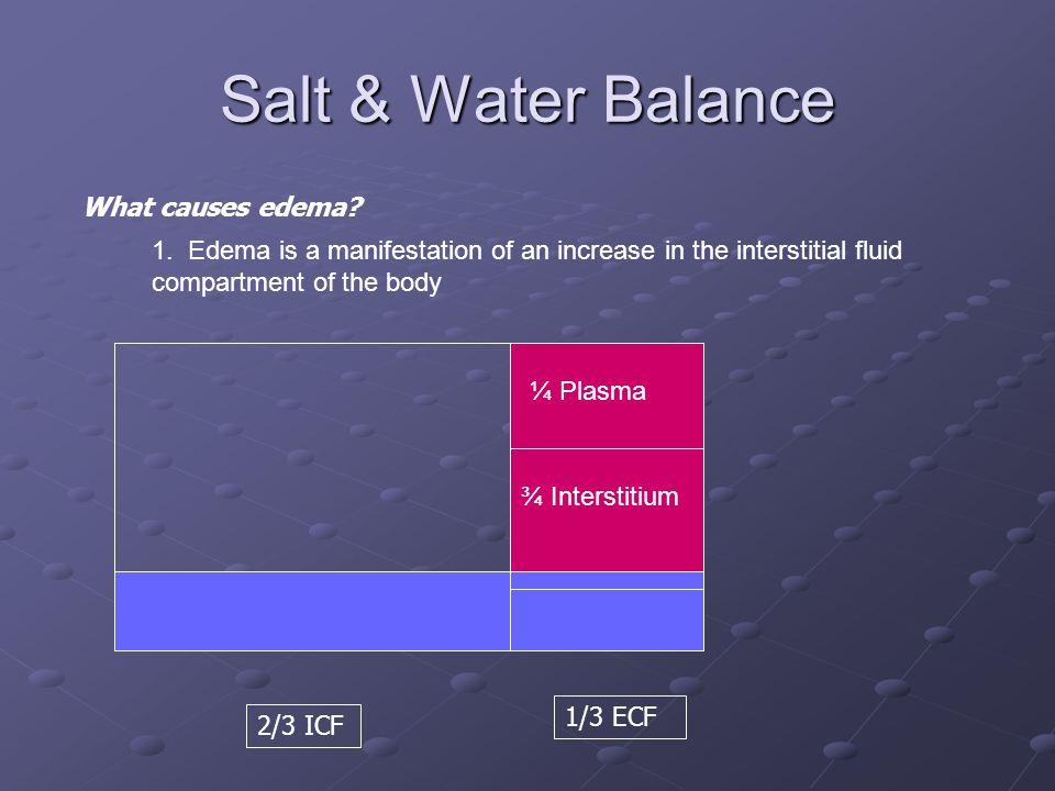 Salt & Water Balance 2/3 ICF 1/3 ECF What causes edema? ¼ Plasma ¾ Interstitium 1. Edema is a manifestation of an increase in the interstitial fluid c