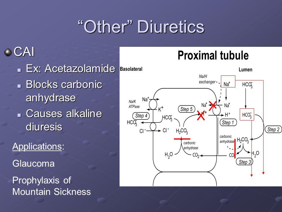 Other Diuretics CAI Ex: Acetazolamide Ex: Acetazolamide Blocks carbonic anhydrase Blocks carbonic anhydrase Causes alkaline diuresis Causes alkaline diuresis Applications: Glaucoma Prophylaxis of Mountain Sickness
