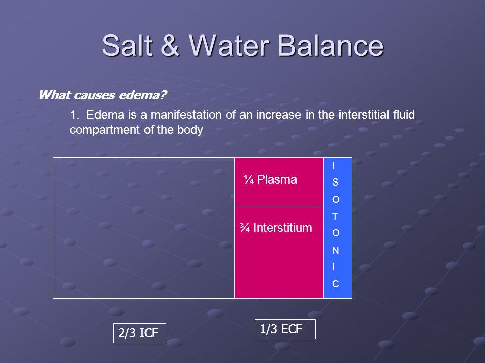 Salt & Water Balance 2/3 ICF 1/3 ECF ISOTONICISOTONIC What causes edema.