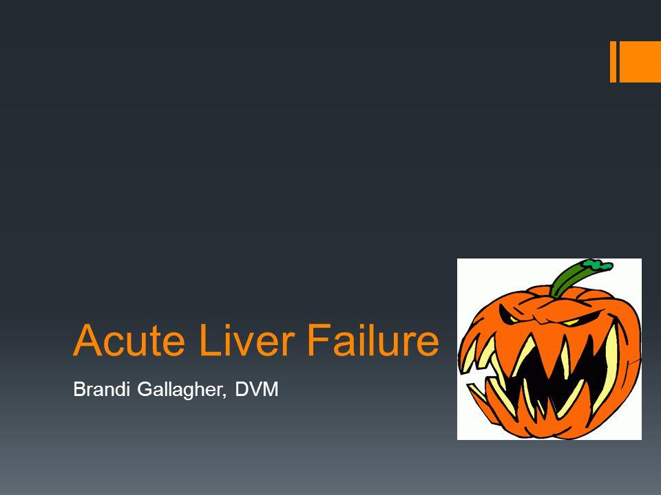 Acute Liver Failure Brandi Gallagher, DVM