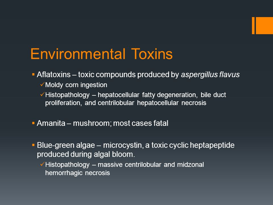 Environmental Toxins  Aflatoxins – toxic compounds produced by aspergillus flavus Moldy corn ingestion Histopathology – hepatocellular fatty degeneration, bile duct proliferation, and centrilobular hepatocellular necrosis  Amanita – mushroom; most cases fatal  Blue-green algae – microcystin, a toxic cyclic heptapeptide produced during algal bloom.